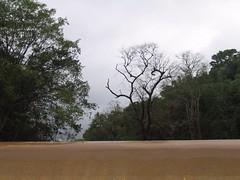 Kollibacchalu Dam -Malenadu Heavy Rain Effects Photography By Chinmaya M.Rao   (85)