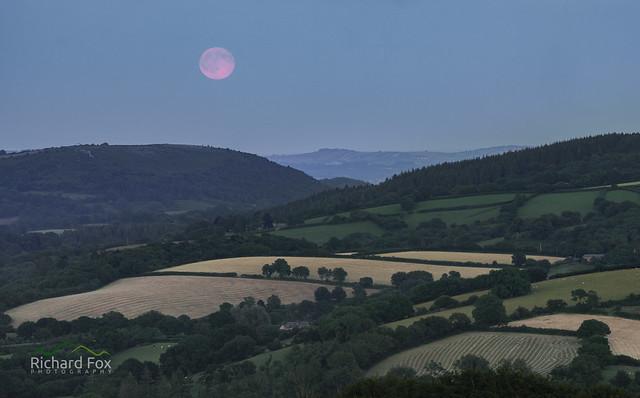 Devonshire Lunar Rise