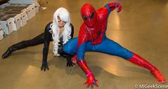 Motor City Comic Con A21