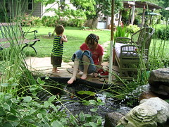 Dads Pond