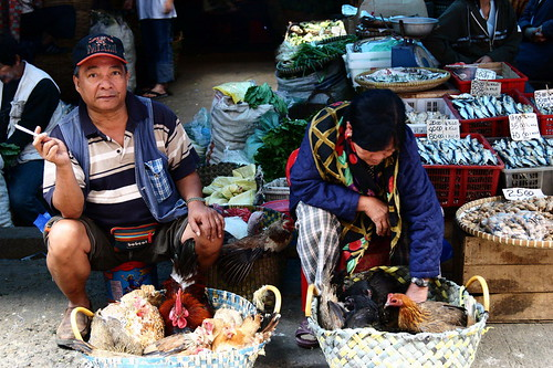 Baguio live chicken rooster sidewalk street market vendor rural Pinoy Filipino Pilipino Buhay  people pictures photos life Philippinen  菲律宾  菲律賓  필리핀(공화�) Philippines