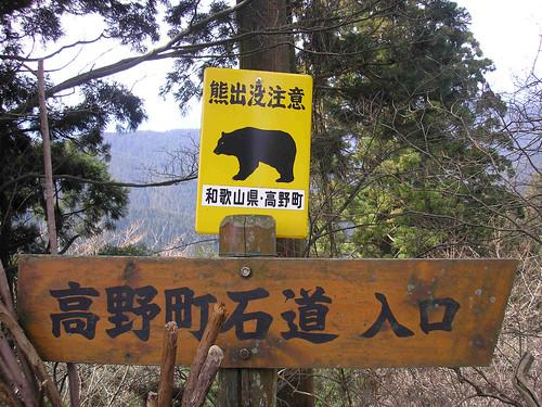 Bears, oh my!