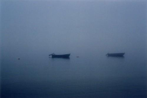 Fog (by bookgrl)