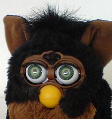 Furby driller