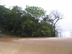 Kollibacchalu Dam -Malenadu Heavy Rain Effects Photography By Chinmaya M.Rao   (58)