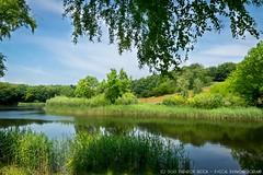"Anna's Hoeve - Hilversum - 3e vijver & berg. (Anna's Farm - 3rd lake &  ""mountain"")"