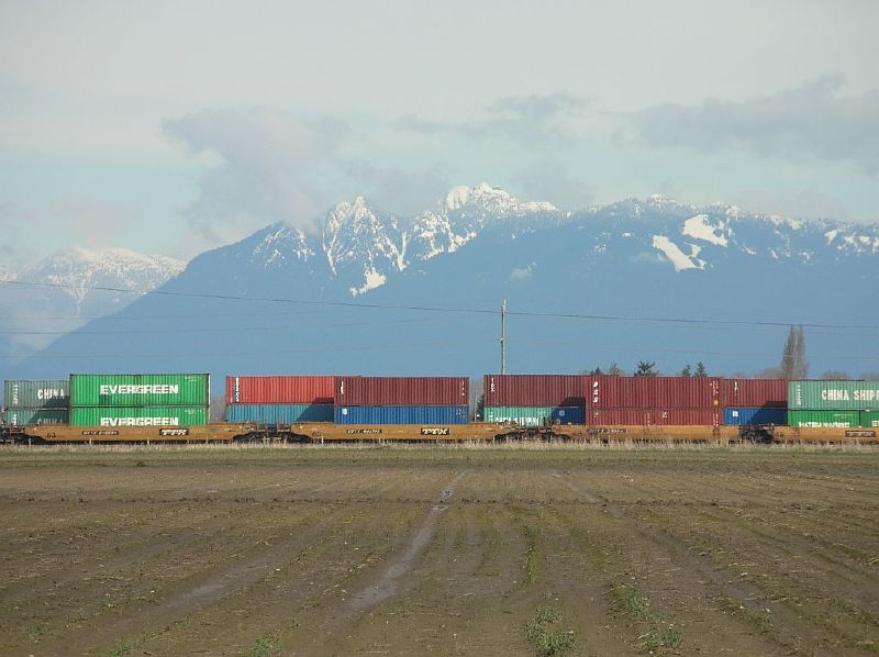 Stacks and Mountains Delta BC 2006_0325