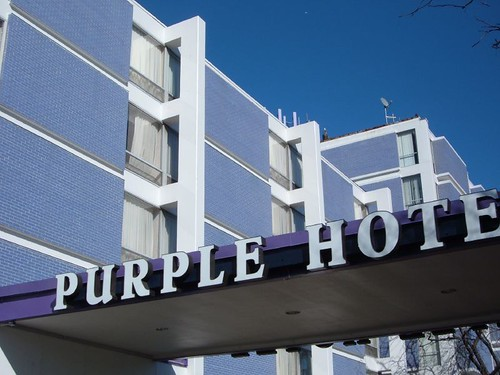 The Purple Hotel