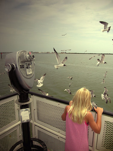 Girl-&-Gulls by s•stop