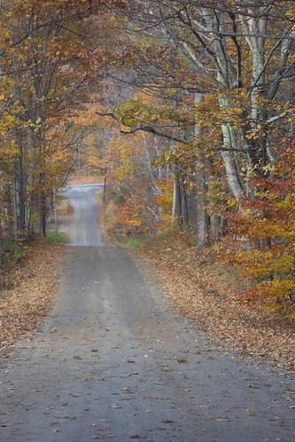 Autumn in Vermont 3