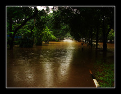 Welcome Back Flood ...... Nice To See You Again :)