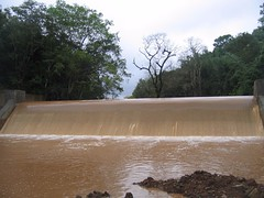 Kollibacchalu Dam -Malenadu Heavy Rain Effects Photography By Chinmaya M.Rao   (80)
