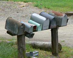 Snail Mail Terminal