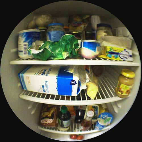 Behind the fridge door