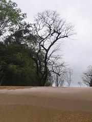Kollibacchalu Dam -Malenadu Heavy Rain Effects Photography By Chinmaya M.Rao   (66)