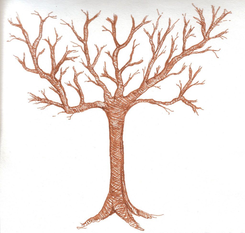 how to draw tree without leaves