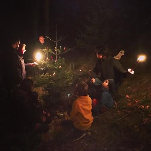 Stille #Nacht im #Wald @ #Dachsberg #Schwarzwald