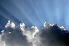 divine light by Amelia PS