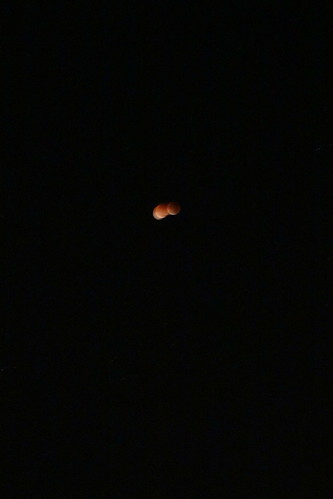 La nuit du Dimanche au Lundi : éclipse de lune !