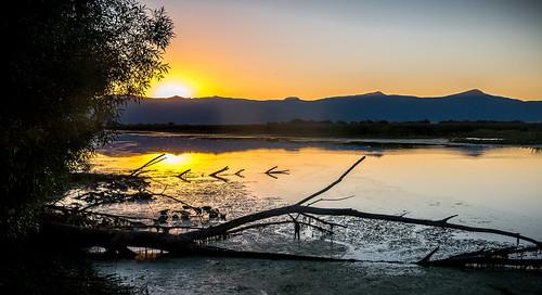 Wood River Wetland by BLMOregon, on Flickr