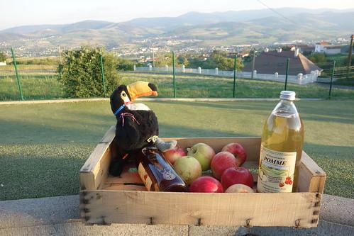 Il repart avec des pommes et du jus de pomme local !