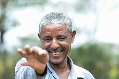 White pea beans in Ethiopia