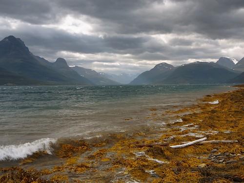 The storfjord