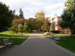 A Look Down Campus Walk