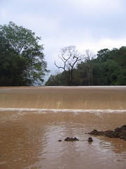 Kollibacchalu Dam -Malenadu Heavy Rain Effects Photography By Chinmaya M.Rao   (87)