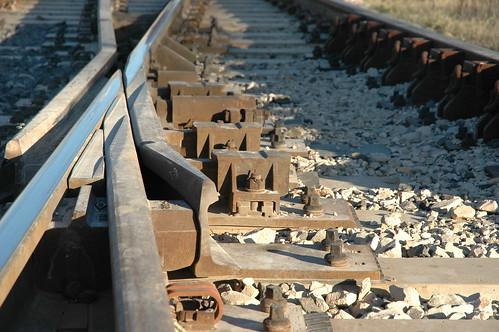 train tracks (by bookgrl)