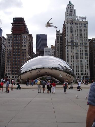 """The Bean"" and a Bird - Millenium Park"