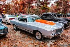 Pumpkin Run 00112