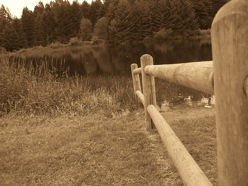 fence and lake in sepia tones
