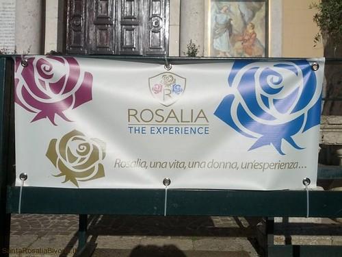 Rosalia-experence-2014-7