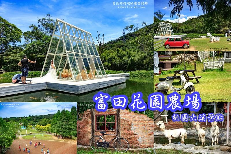 桃園燈會一日遊.2016台灣燈會在桃園(充滿知性與歷史的大溪總統鎮)