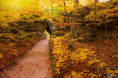 Sanspareil im Herbst-16
