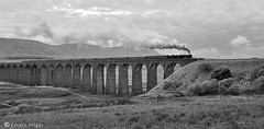 Leander Crossing Ribblehead