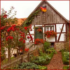 the 7 dwarves' cottage
