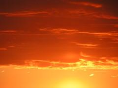Orange Colored Sky