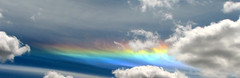 Circumhorizon Arc