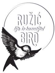 bird_zig sve opcineok