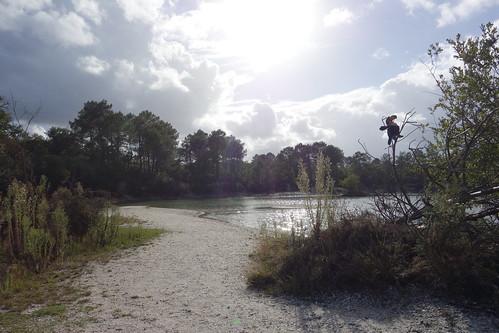 Pelico s'est posé au lac bleu situé dans la commune