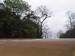 Kollibacchalu Dam -Malenadu Heavy Rain Effects Photography By Chinmaya M.Rao   (68)