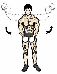 Dumbbell Lateral Rises