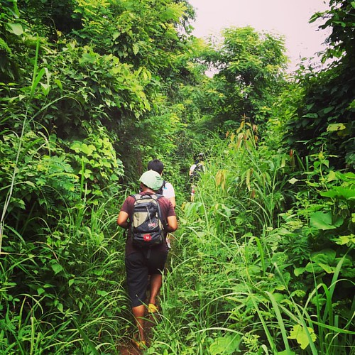 Let's go to the #Jungle!  @ #ChangMai #Thailand  #thailoup #traveloup