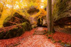 Sanspareil im Herbst-19