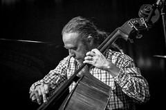 Ulf Krokfors