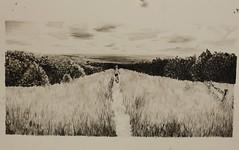 Landscape Pen and Ink