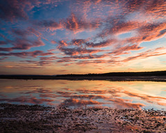 """Findhorn Mirror • <a style=""""font-size:0.8em;"""" href=""""http://www.flickr.com/photos/26440756@N06/21632282998/"""" target=""""_blank"""">View on Flickr</a>"""