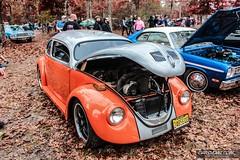 Pumpkin Run 00116